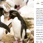 "National Geographic se rectificó por ""Falklands"""