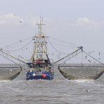 Pesca ilegal: El Reino Unido debería pagarle a la Argentina 200.000 millones de dólares