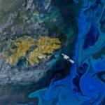 Mar Argentino, uno de los mejores caladeros del mundo