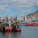 Puertos patagónicos buscan negociar con los barcos chinos y españoles que pescan ilegalmente